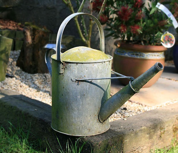 Rustic green watering can for gardening