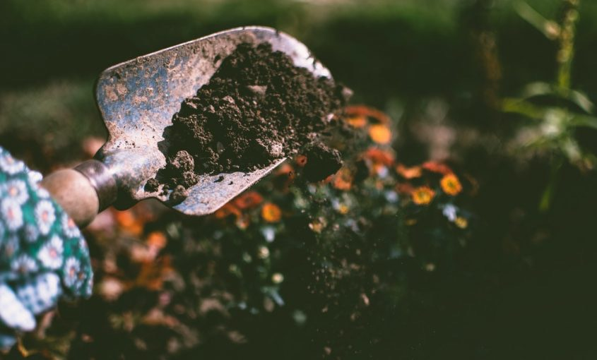 The Proper Way to Garden Compost