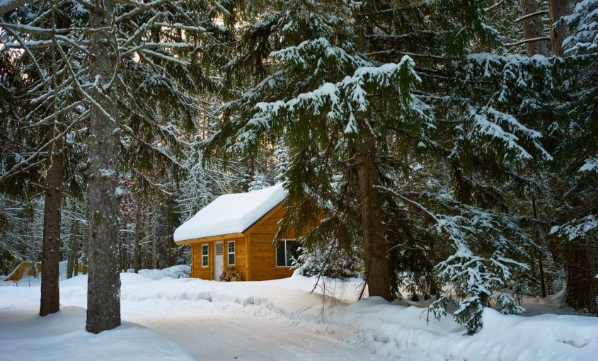 Lawn and Snow Removal: Tips For This Winter