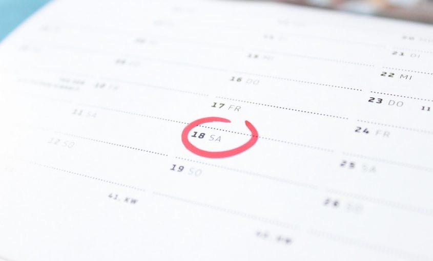 Organic Lawn Care Schedule